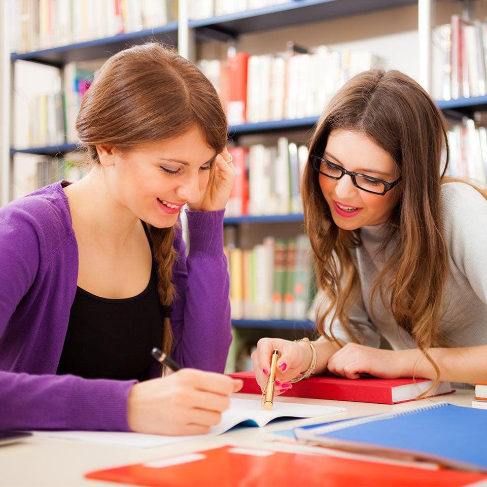Academia de apoyo e inglés